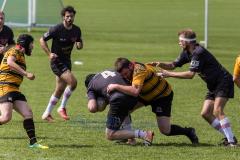 RUGBY CLUB BERN vs. RC WINTERTHUR